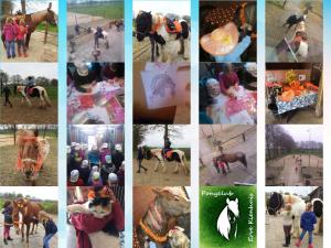 Een leuke collage van onze doe-middag van 25 april 2016