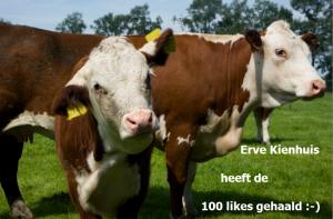 Over de 100 likes op facebook