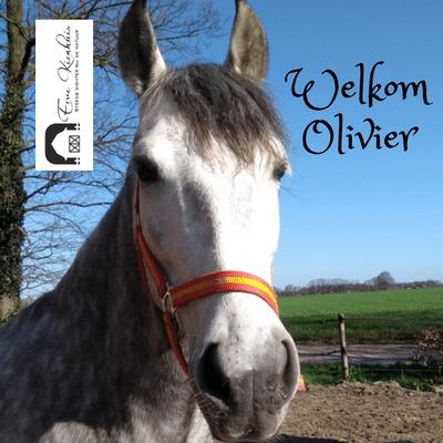 Welkom Olivier